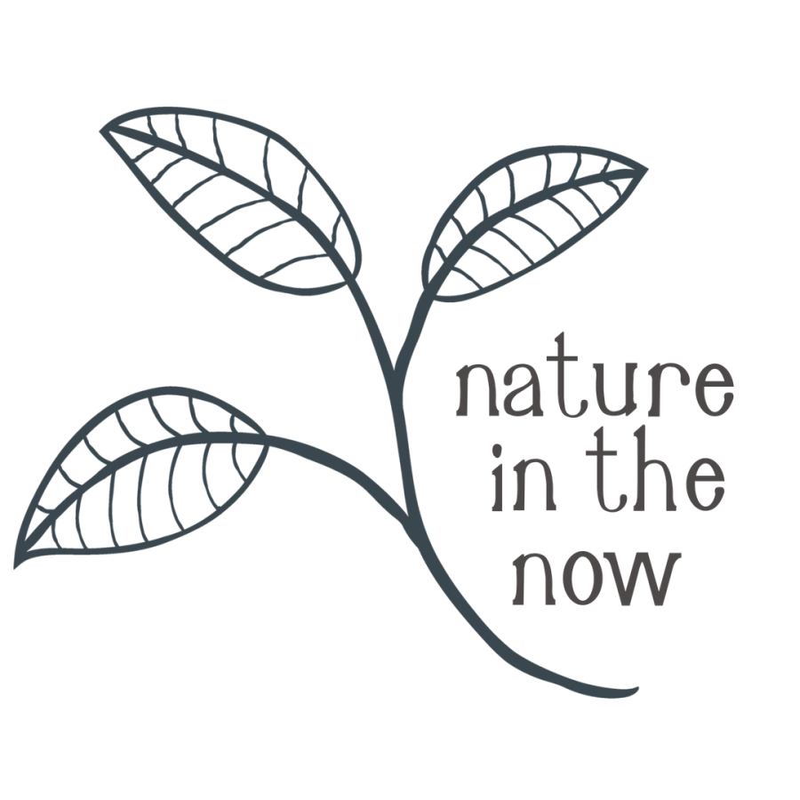 Large Nature is Now Logo