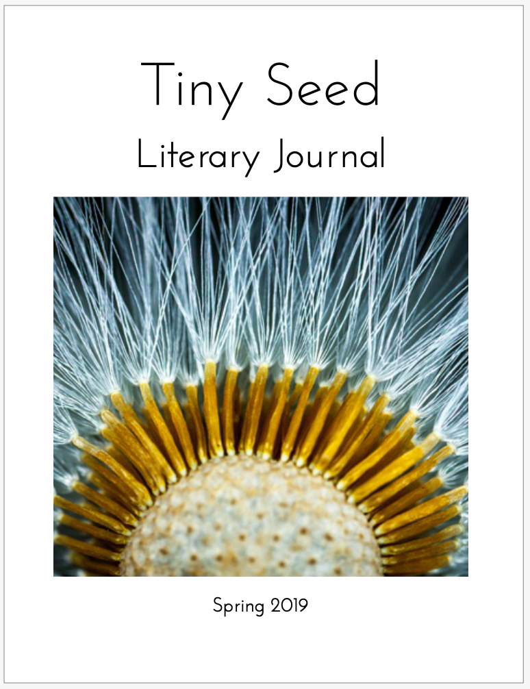 Spring Journal 2019 – TINY SEED LITERARY JOURNAL